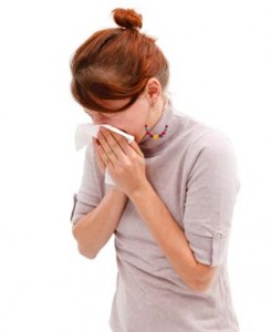 Hay fever advice